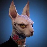 斯芬克斯猫穿西服头像 微信头像图片大全