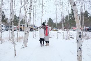 初见想念的雪