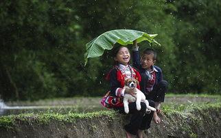 南北部一家人的背影   Nguyen Vu ... 此外,他拍摄的照片还向人们展示...