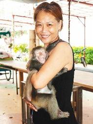 台湾猕猴 妹妹 生性爱吃醋 游客觉得超有趣