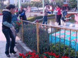 12月8日,武宣县八仙迎宾池旁,工作人员正在摆放鲜花,以喜庆的气...