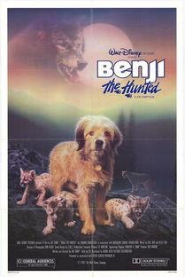 狗的视角来强调动物对人类的不离... 尽管这样的主题有些虚无缥缈,但...