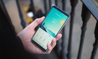 BenQ-Siemens C30手机使用说明书:[4]