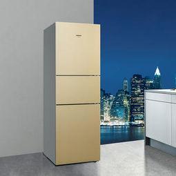 西门子KK25F69TI电冰箱使用说明书:[3]