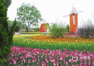 西安植物园局部将搬南三环 曲江斥资5.2亿