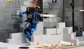 谷歌全能机器人在 奥林匹克大赛 脱颖而出