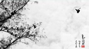 描写春天的古诗有哪些?