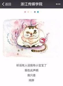 肥猫流浪记 跟你讲讲浙传神兽的故事