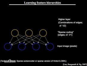 网络的反向传播算法(也叫Back Propagation算法或者BP算法)的发...