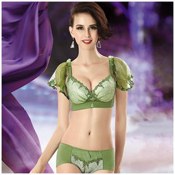 薄款刺绣少女士内衣套装性感厚小胸罩聚拢调整型无钢圈文胸图片-少...