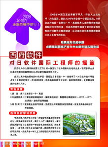 西府软件宣传单页5图片