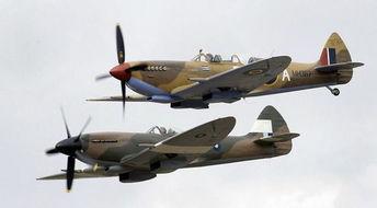 ...经典航空展举行14年以来首次坠毁的飞机.(网页截图)-新西兰航空...