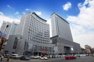 宜昌市中心人民医院医技本科生招聘公告