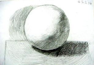 那个有素描圆的图大的要有线条和调子