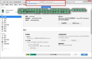 手机QQ聊天记录在哪个文件夹 苹果安卓手机全教程