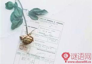 2015年重庆高考满分作文