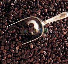 金牌特级蓝山咖啡-细数全球十大极品咖啡豆