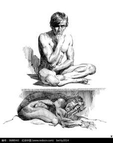 人面狮子兽手绘素描图图片免费下载 编号3688940 红动网