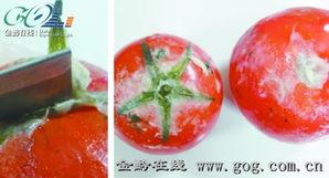 红蕃茄hk16-红番茄买回来3天变 白头翁