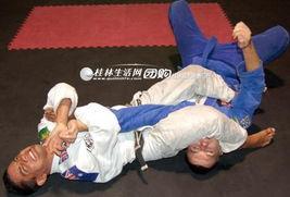 ...课程 咏春拳 女子防身术 综合格斗 巴西柔术 机械舞 国标拉丁 爵士舞...
