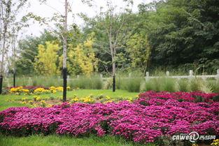 西安植物园新区十一将开园 镜头记录美丽真容