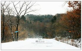 雪色苍茫 在路上