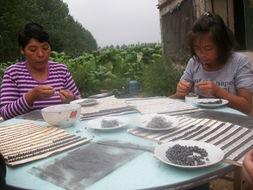 商水县:留守妇女在家挣钱门路多-河南网群 图片要闻