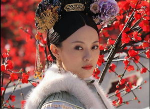 .   4、《孝庄秘史》,苏茉儿,由胡静饰演,人比花
