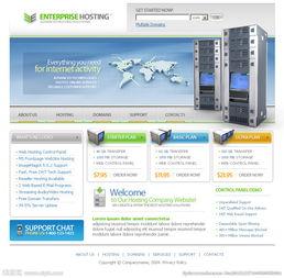 国外空间域名服务器主机网页设计图片