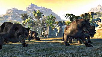 坎贝拉危险狩猎2013下载 单机游戏坎贝拉危险狩猎2013下载