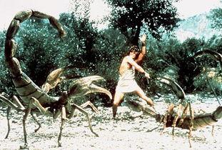 昆虫和螃蟹都是巨人.