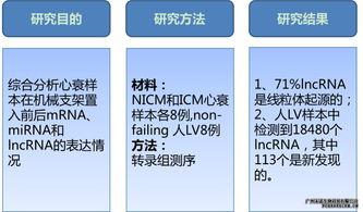 长链非编码RNA测序服务 lnc RNA
