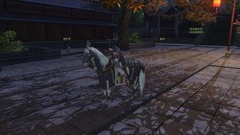 白马:300的马鞍,尼玛,这是神马玩意,拒穿......   黑马:尼玛,别给...