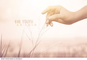 青春 折翅飞翔