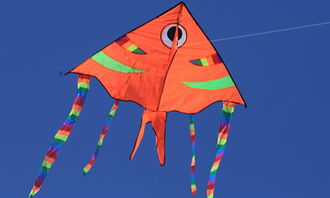 怎么放风筝?