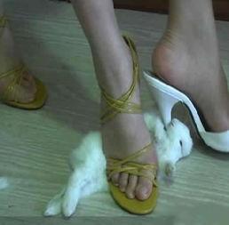 美女高跟踩踏图片 美女没衣服开腿的图,网吧美女睡觉逋