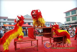 雨中舞狮 襄阳晚报数字报 襄阳晚... 复馆两周年,在雨中表演了一次舞狮...