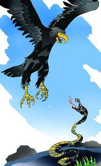 但是,有一条蛇却决定向鹰挑战,为自己的家族报仇雪恨.   蛇不会像...