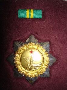 获得的二级独立自由勋章图片