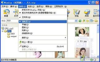 图3 图片缩略图预览-无须对文件解压 WinZIP可直接预览图片