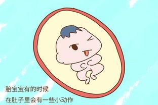 messloffel是什么意思-二、   宝宝在学本领   胎宝宝有的时候在肚子里会有一些小动作,从而...