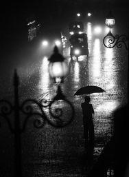 倾盆大雨中  图片中的景象发生在斯里兰卡的康提.在瓢泼...