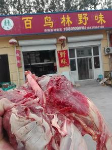 ...多少钱一斤野猪肉怎么做好吃百鸟林野味野猪养殖网告诉你最新新闻...