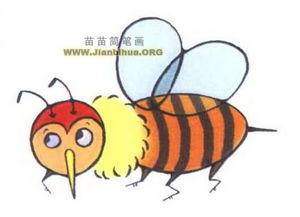 卡通蜜蜂简笔画图片3张