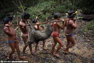 直击巴西印第安人生活现状