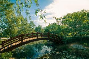 ...秋时节那里玩 郑州休闲农业推多条线路供市民参考