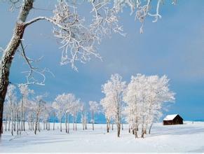 描写雪的成语