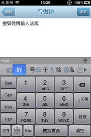 快速准确地进行文本输入的问题一直困扰中国用户.   8月8日,搜狐微...