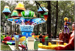 春节 石刻公园游乐园