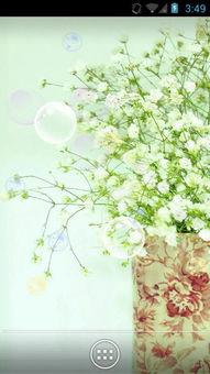 清爽花朵动态壁纸下载